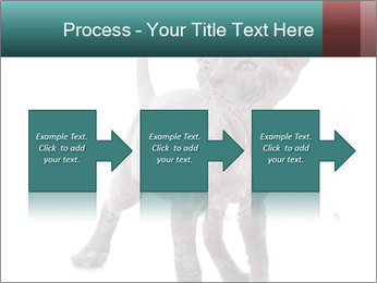 Cat PowerPoint Template - Slide 88