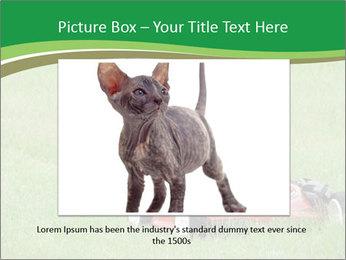 Lawn PowerPoint Template - Slide 15