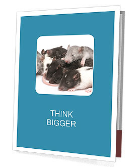 0000091769 Presentation Folder