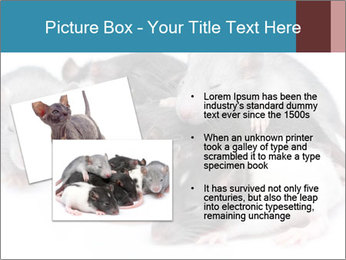 Mice PowerPoint Template - Slide 20