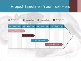 Mice PowerPoint Template - Slide 25
