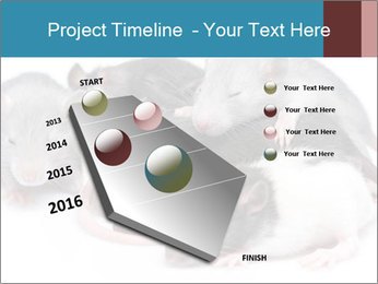 Mice PowerPoint Template - Slide 26