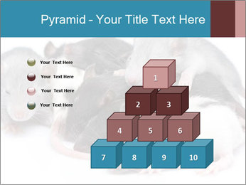 Mice PowerPoint Template - Slide 31