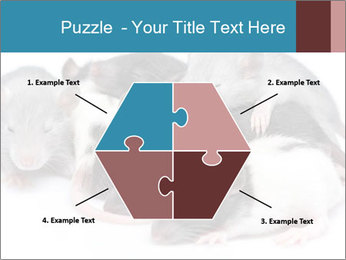 Mice PowerPoint Template - Slide 40