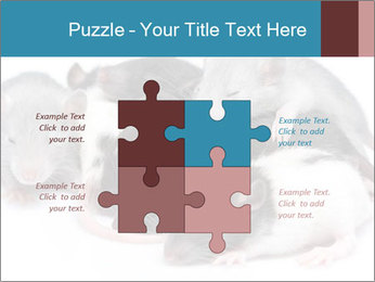Mice PowerPoint Template - Slide 43