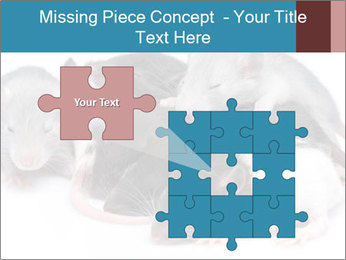 Mice PowerPoint Template - Slide 45