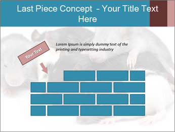 Mice PowerPoint Template - Slide 46