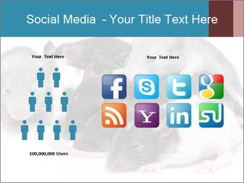 Mice PowerPoint Template - Slide 5