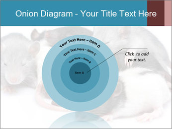 Mice PowerPoint Template - Slide 61