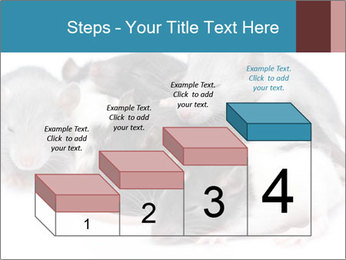 Mice PowerPoint Template - Slide 64