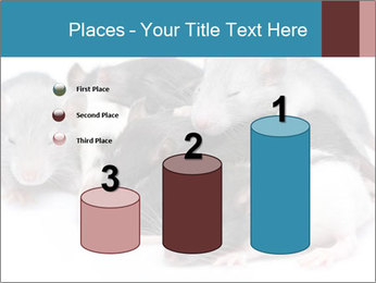 Mice PowerPoint Template - Slide 65