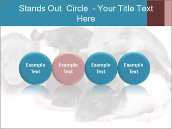 Mice PowerPoint Template - Slide 76