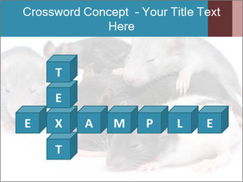 Mice PowerPoint Template - Slide 82