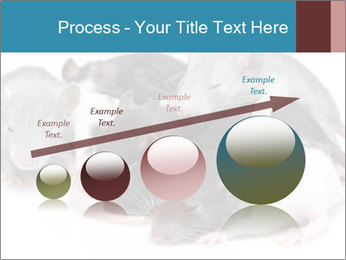 Mice PowerPoint Template - Slide 87