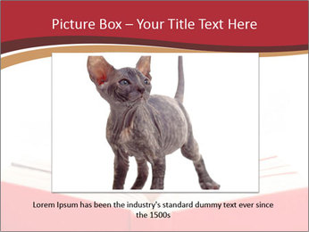Exciting PowerPoint Template - Slide 15