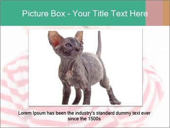 Girls teeth PowerPoint Template - Slide 15