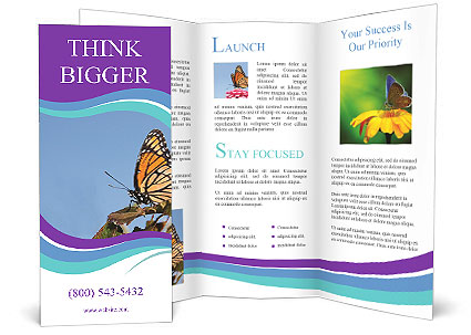 0000091775 Brochure Templates