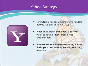 Butterfly PowerPoint Templates - Slide 11