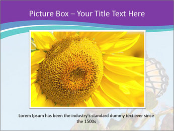 Butterfly PowerPoint Templates - Slide 16