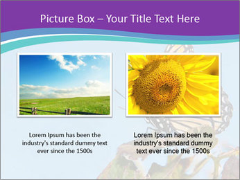 Butterfly PowerPoint Templates - Slide 18