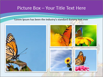 Butterfly PowerPoint Templates - Slide 19