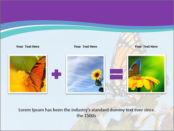 Butterfly PowerPoint Templates - Slide 22