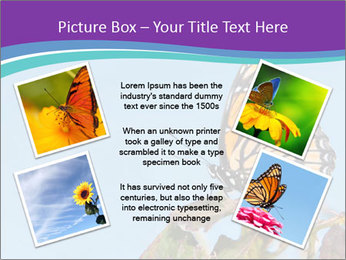 Butterfly PowerPoint Templates - Slide 24