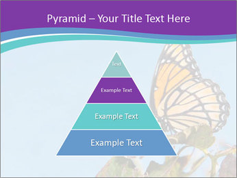 Butterfly PowerPoint Templates - Slide 30