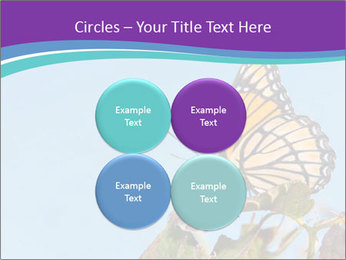 Butterfly PowerPoint Templates - Slide 38