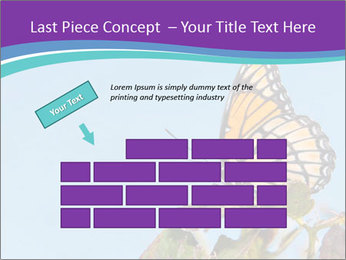 Butterfly PowerPoint Templates - Slide 46