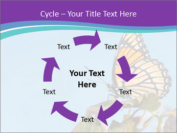 Butterfly PowerPoint Templates - Slide 62