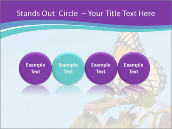 Butterfly PowerPoint Templates - Slide 76