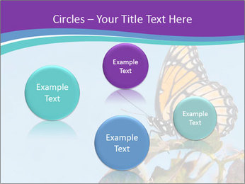 Butterfly PowerPoint Templates - Slide 77