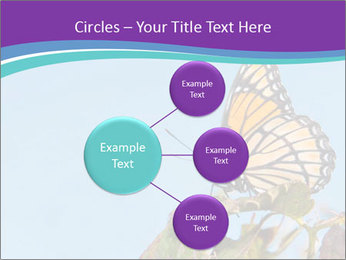 Butterfly PowerPoint Templates - Slide 79