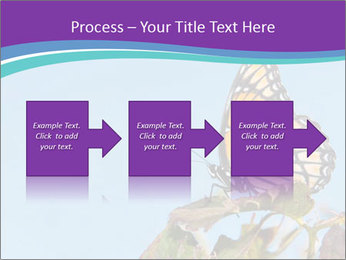 Butterfly PowerPoint Templates - Slide 88