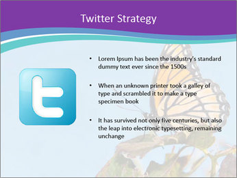 Butterfly PowerPoint Templates - Slide 9