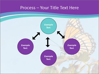 Butterfly PowerPoint Templates - Slide 91