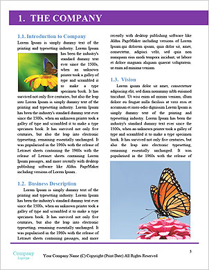 0000091775 Word Template - Page 3