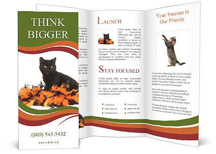 0000091778 Brochure Template
