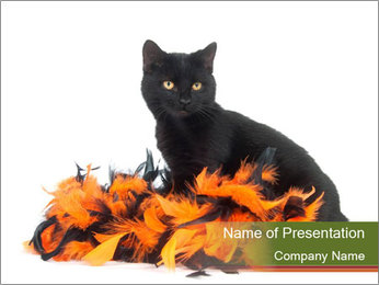Halloween decorations PowerPoint Template - Slide 1