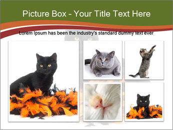 Halloween decorations PowerPoint Template - Slide 19