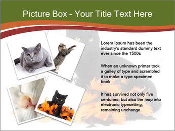 Halloween decorations PowerPoint Template - Slide 23