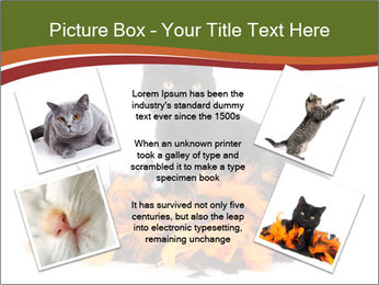 Halloween decorations PowerPoint Template - Slide 24