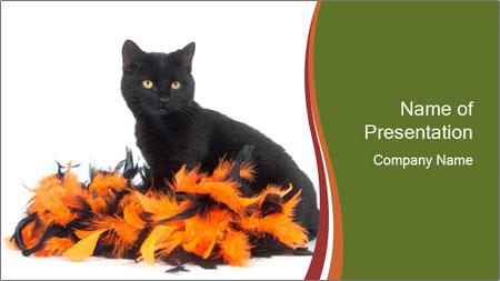 Halloween decorations PowerPoint Template