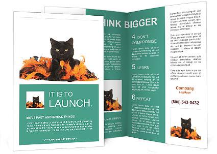 0000091779 Brochure Templates