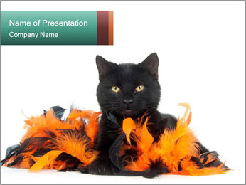 Black cat PowerPoint Template - Slide 1