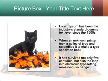 Black cat PowerPoint Template - Slide 13