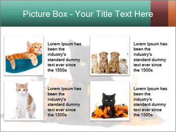 Black cat PowerPoint Template - Slide 14