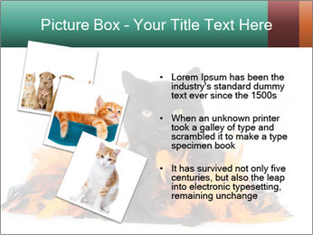 Black cat PowerPoint Template - Slide 17