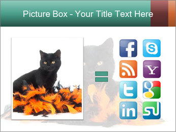 Black cat PowerPoint Template - Slide 21